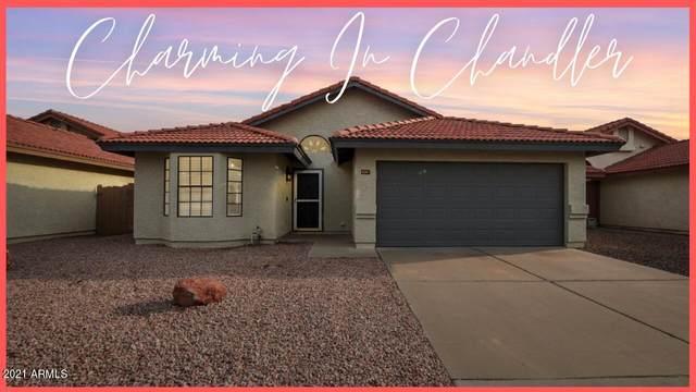 4267 W Gail Drive, Chandler, AZ 85226 (MLS #6302218) :: The Daniel Montez Real Estate Group