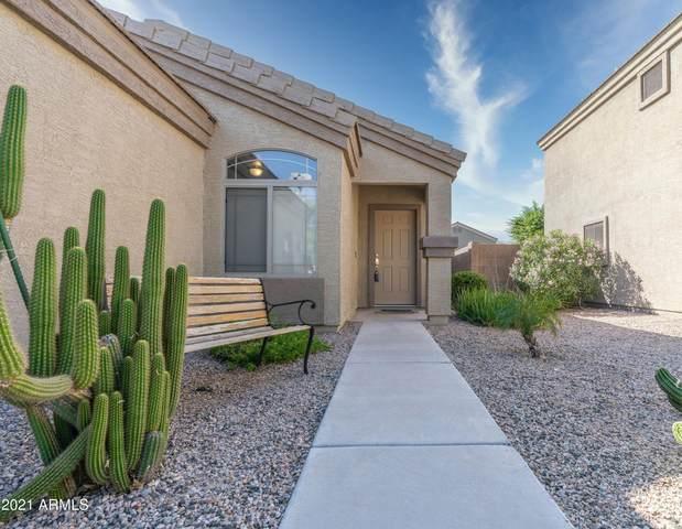 43923 W Wild Horse Trail, Maricopa, AZ 85138 (MLS #6302229) :: Elite Home Advisors