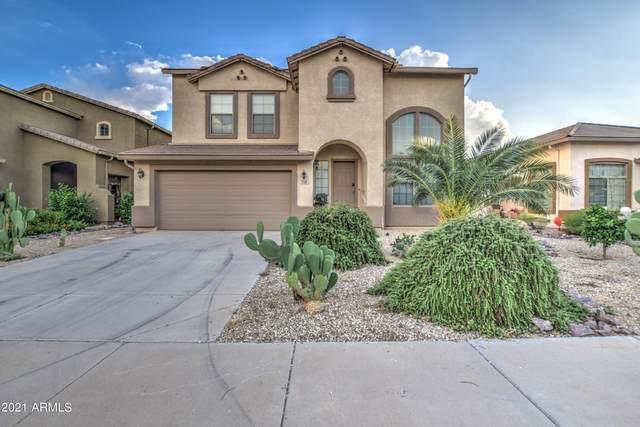 725 W Desert Basin Drive, San Tan Valley, AZ 85143 (MLS #6302281) :: Klaus Team Real Estate Solutions