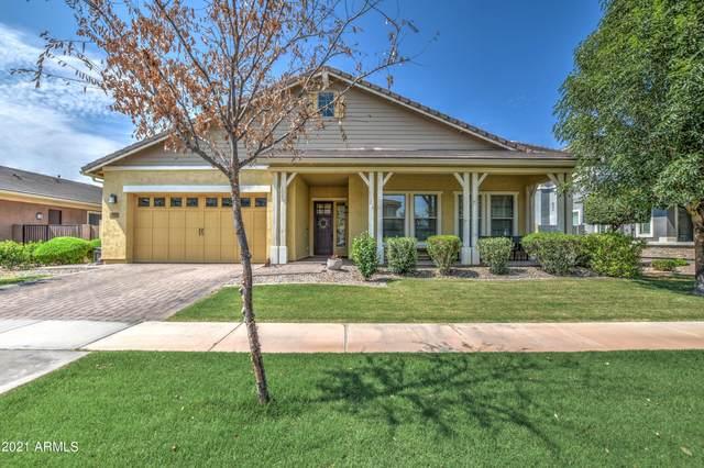 2836 E Sagebrush Street, Gilbert, AZ 85296 (MLS #6302296) :: Elite Home Advisors
