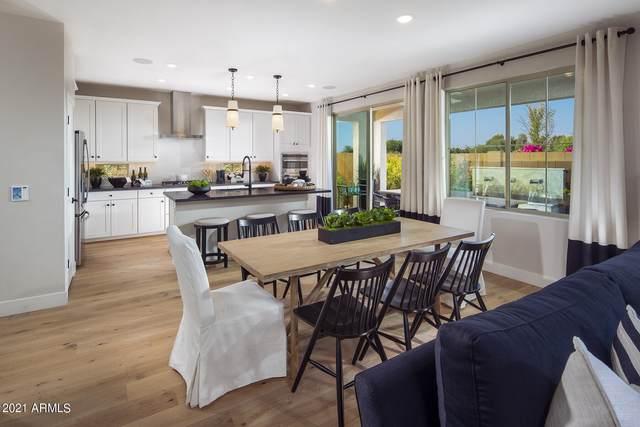 1324 W Bluejay Drive, Chandler, AZ 85286 (MLS #6302297) :: Klaus Team Real Estate Solutions