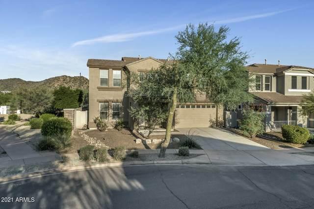 35213 N 30TH Drive, Phoenix, AZ 85086 (MLS #6302337) :: Elite Home Advisors