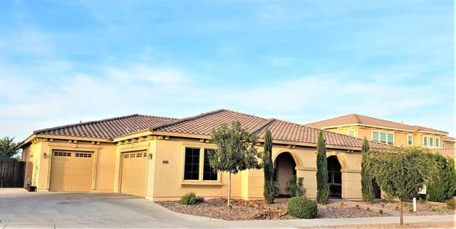 21336 E Waverly Drive, Queen Creek, AZ 85142 (MLS #6302339) :: Dijkstra & Co.