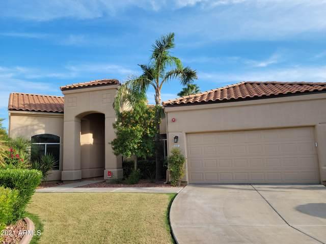 9141 N 115TH Place, Scottsdale, AZ 85259 (MLS #6302382) :: Elite Home Advisors