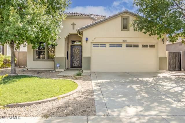4621 W Fortune Drive, Anthem, AZ 85086 (MLS #6302396) :: Elite Home Advisors