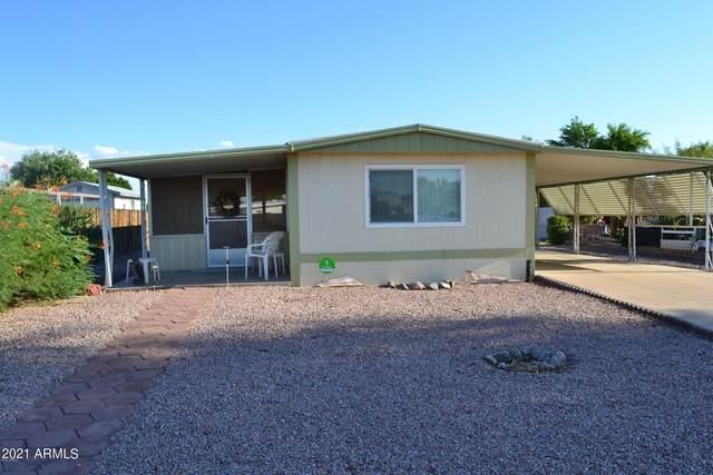 8619 E Dewberry Avenue, Mesa, AZ 85208 (MLS #6302445) :: Elite Home Advisors