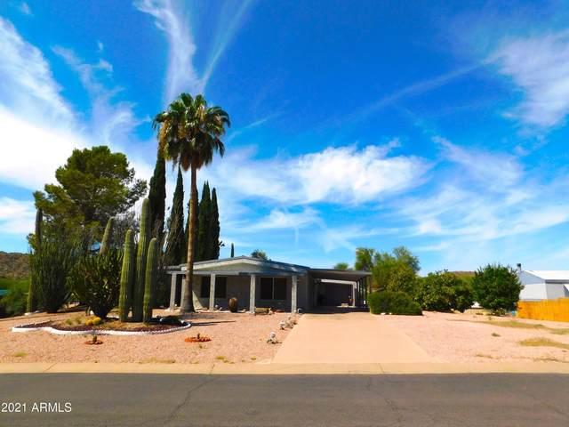 428 S Cholla Drive, Queen Valley, AZ 85118 (MLS #6302448) :: Fred Delgado Real Estate Group