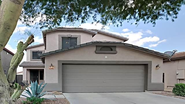 1354 E Leaf Road, San Tan Valley, AZ 85140 (MLS #6302454) :: Elite Home Advisors
