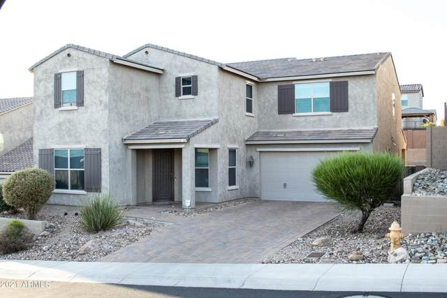 2914 W Amber Sun Drive, Phoenix, AZ 85085 (MLS #6302482) :: Elite Home Advisors