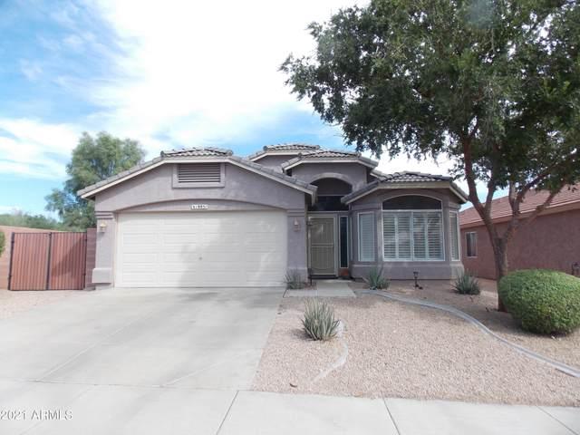 18851 N 16TH Place, Phoenix, AZ 85024 (MLS #6302484) :: Elite Home Advisors