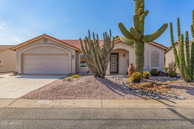 6922 S Championship Drive, Chandler, AZ 85249 (MLS #6302485) :: The Daniel Montez Real Estate Group