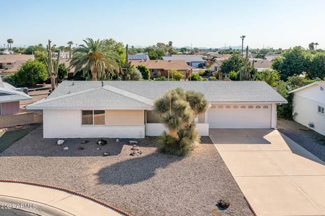 10259 N 101ST Drive, Sun City, AZ 85351 (MLS #6302486) :: Elite Home Advisors