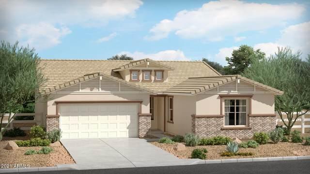 6652 N Cima Vista Drive, Casa Grande, AZ 85194 (MLS #6302492) :: Yost Realty Group at RE/MAX Casa Grande