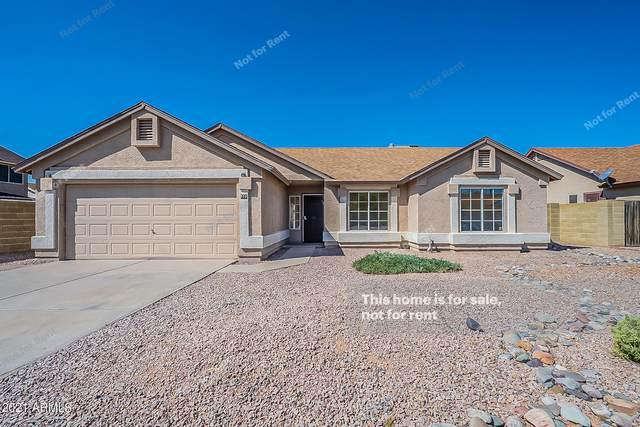 832 N Falcon Drive, Gilbert, AZ 85234 (MLS #6302496) :: Elite Home Advisors