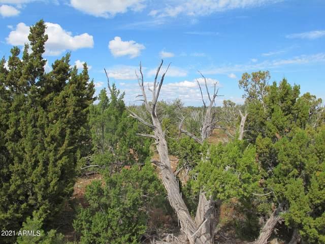 3972 Sunset Ridge Loop, Happy Jack, AZ 86024 (MLS #6302527) :: Yost Realty Group at RE/MAX Casa Grande