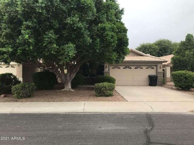 177 W Shannon Street, Gilbert, AZ 85233 (MLS #6302551) :: Klaus Team Real Estate Solutions