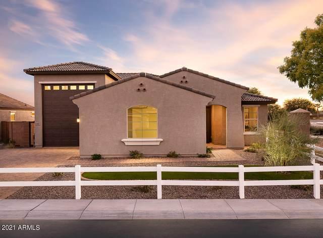 10447 W Appaloosa Trail, Casa Grande, AZ 85194 (MLS #6302555) :: Yost Realty Group at RE/MAX Casa Grande
