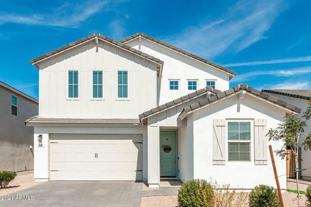 628 E Hazelnut Lane, San Tan Valley, AZ 85140 (MLS #6302571) :: Dijkstra & Co.