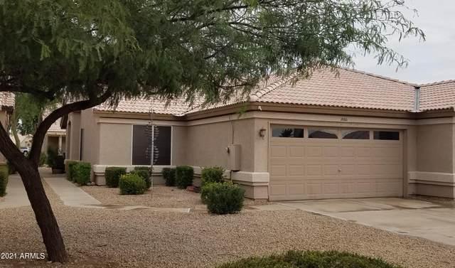 20611 N 104TH Avenue, Peoria, AZ 85382 (MLS #6302574) :: Elite Home Advisors