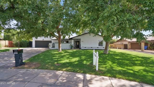 8649 N 16TH Avenue, Phoenix, AZ 85021 (MLS #6302581) :: Klaus Team Real Estate Solutions