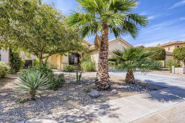 16744 N 152ND Court, Surprise, AZ 85374 (MLS #6302597) :: Elite Home Advisors