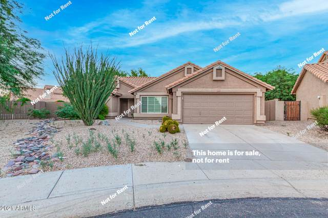 4044 E Cascalote Drive, Cave Creek, AZ 85331 (MLS #6302609) :: RE/MAX Desert Showcase