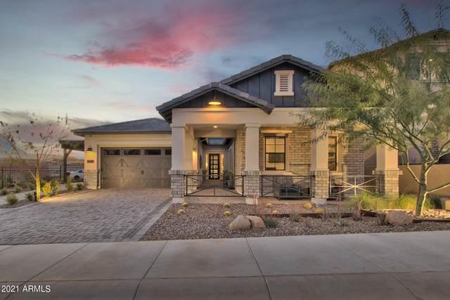16436 S 7TH Place, Phoenix, AZ 85048 (MLS #6302615) :: Elite Home Advisors