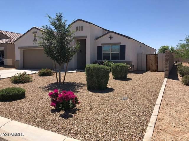4679 E Pearl Road, San Tan Valley, AZ 85143 (MLS #6302623) :: Elite Home Advisors