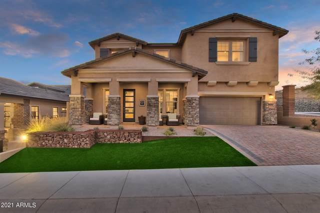 16510 S 7TH Place, Phoenix, AZ 85048 (MLS #6302636) :: Elite Home Advisors