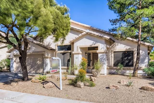 22827 N 21ST Way, Phoenix, AZ 85024 (MLS #6302647) :: Elite Home Advisors