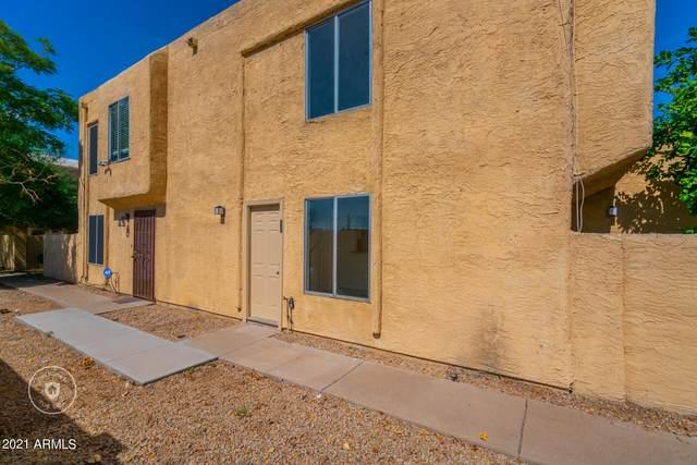 17031 N 16TH Drive #11, Phoenix, AZ 85023 (MLS #6302662) :: The Dobbins Team