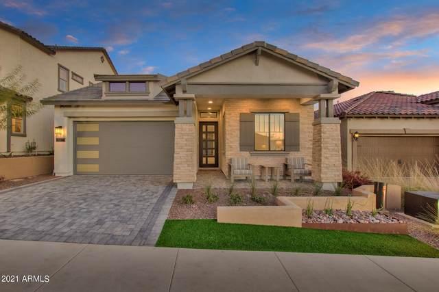 734 E Ashurst Drive, Phoenix, AZ 85048 (MLS #6302681) :: Elite Home Advisors
