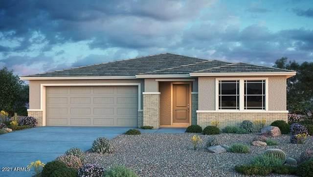 11555 W Marguerite Avenue, Avondale, AZ 85323 (MLS #6302683) :: The Daniel Montez Real Estate Group