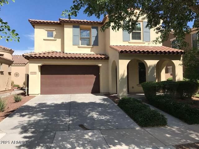 2233 N Park Meadows Drive, Buckeye, AZ 85396 (MLS #6302714) :: The Garcia Group