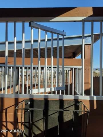 500 S Skyline Circle, Tombstone, AZ 85638 (MLS #6302739) :: Elite Home Advisors
