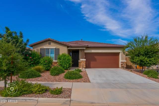 16164 W Poinsettia Drive, Surprise, AZ 85379 (MLS #6302743) :: Elite Home Advisors