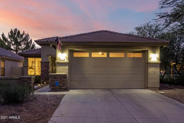 4476 E Melrose Street, Gilbert, AZ 85297 (MLS #6302781) :: Elite Home Advisors