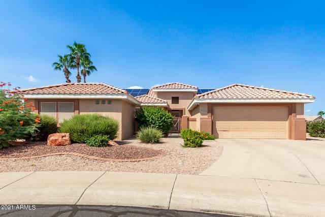 14626 W Caballero Drive, Sun City West, AZ 85375 (MLS #6302814) :: Elite Home Advisors