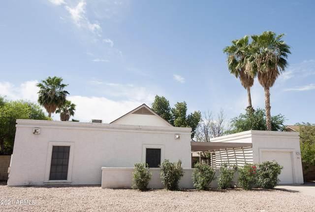 1515 W Loughlin Drive, Chandler, AZ 85224 (MLS #6302843) :: Elite Home Advisors