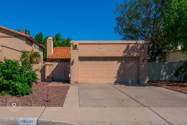 18229 N 16TH Way, Phoenix, AZ 85022 (MLS #6302844) :: The Luna Team