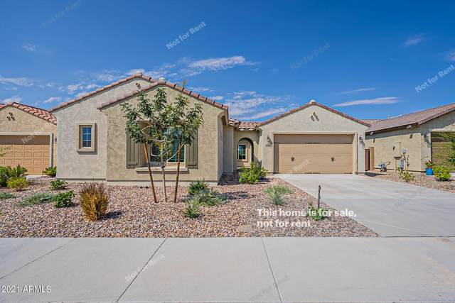5934 W Autumn Vista Way, Florence, AZ 85132 (MLS #6302882) :: Elite Home Advisors