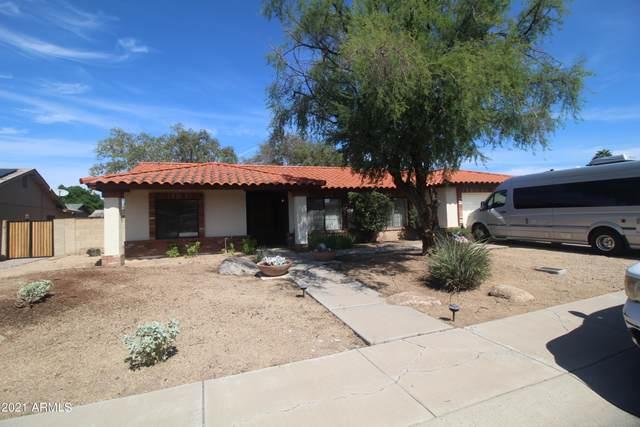 3344 W Taro Lane, Phoenix, AZ 85027 (MLS #6302915) :: Elite Home Advisors