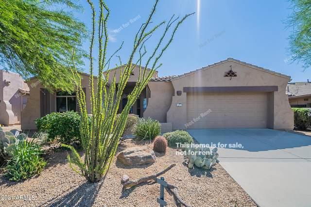 9969 E Desert Trail Lane, Gold Canyon, AZ 85118 (MLS #6302944) :: Elite Home Advisors