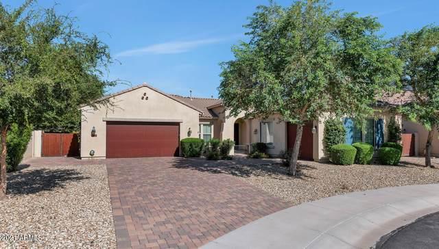 16050 W Harvard Street, Goodyear, AZ 85395 (MLS #6302945) :: Elite Home Advisors