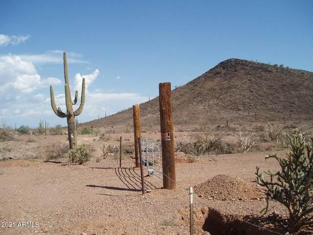 29901-99 W Villa Cassandra Way, Unincorporated County, AZ 85361 (MLS #6303010) :: The Ellens Team