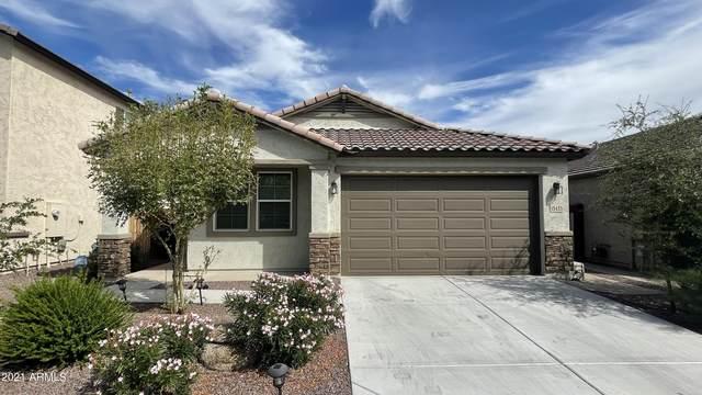 15433 N 22ND Lane, Phoenix, AZ 85023 (MLS #6303013) :: Elite Home Advisors