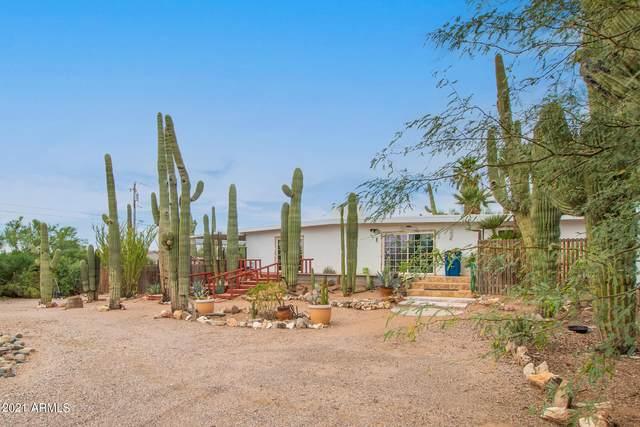 714 N Cortez Road, Apache Junction, AZ 85119 (MLS #6303072) :: Klaus Team Real Estate Solutions