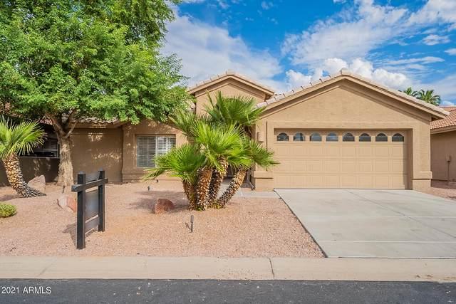 25031 S Angora Court, Sun Lakes, AZ 85248 (MLS #6303077) :: Elite Home Advisors