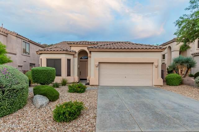 3333 N Brighton, Mesa, AZ 85207 (MLS #6303087) :: Elite Home Advisors