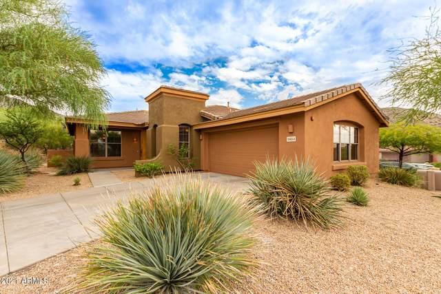 11454 E Helm Drive, Scottsdale, AZ 85255 (MLS #6303096) :: Elite Home Advisors